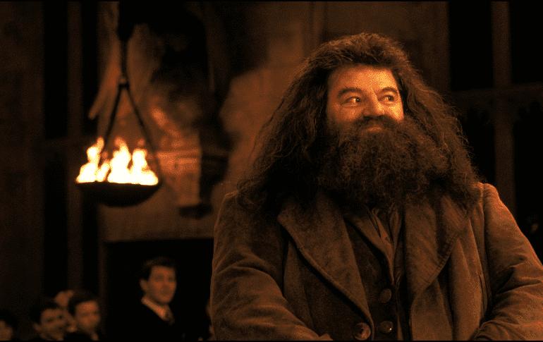 """Actor de """"Harry Potter"""" reaparece en silla de ruedas"""